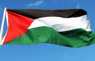 La bocciatura della risoluzione palestinese